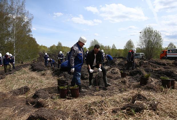 Навечно вписаны в историю рабочие Кузбасса. Благодаря КТК в угольном «сердце» России зашумит роща из 4 тысяч деревьев.