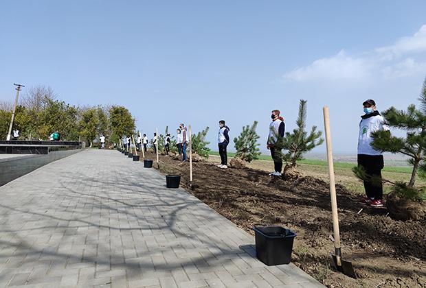 Волонтеры акции становятся хранителями традиций и истории. За каждым деревом — чья-то жизнь, чей-то подвиг.