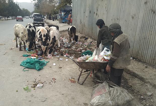 Нищие афганские дети собирают мусор