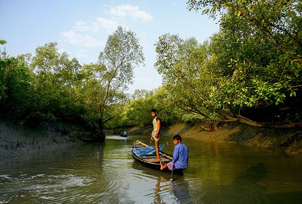 Рыбаки в Сундарбане