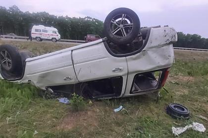 Россиянка устроила ДТП с тремя пострадавшими из-за клеща
