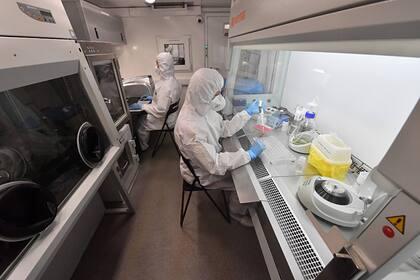 Индийский штамм коронавируса выявили в Минске
