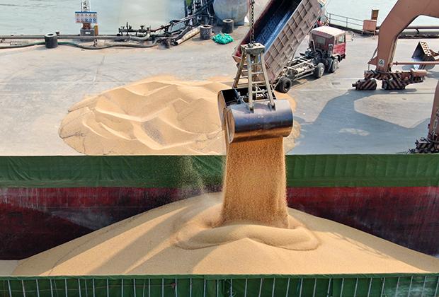 Разгрузка сои, закупленной у Украины, в китайском порту
