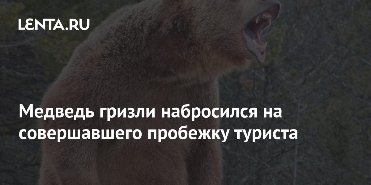 share aa0464617f04488089d185db86f356dd Медведь гризли набросился на совершавшего пробежку туриста