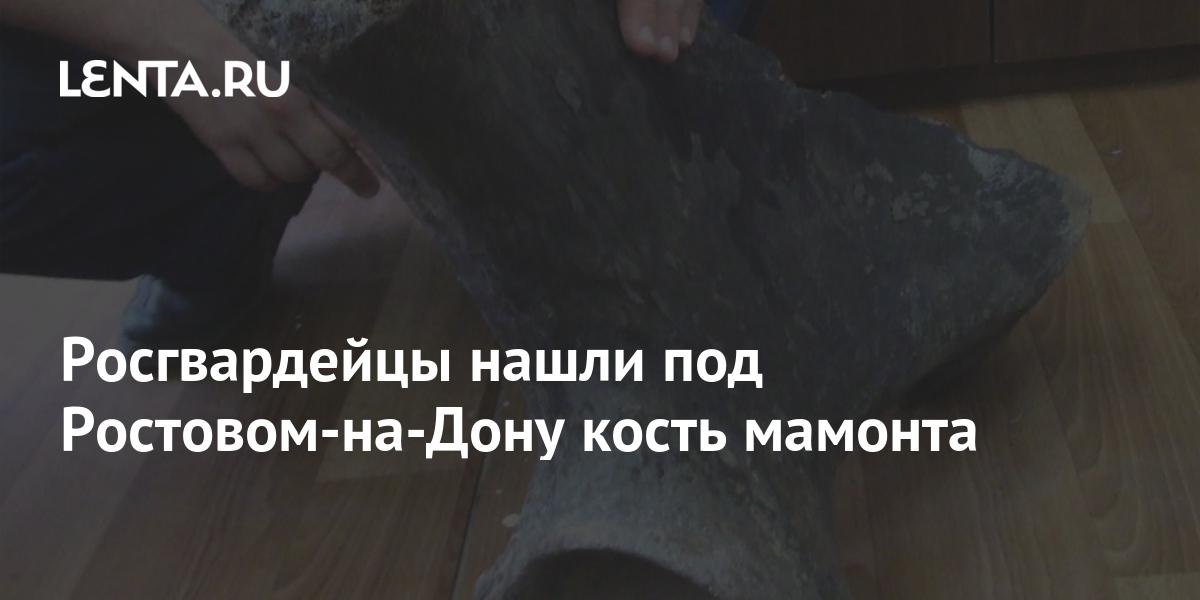 share c76cdce0576ca810cf56190f001f7dc2 Росгвардейцы нашли под Ростовом-на-Дону кость мамонта