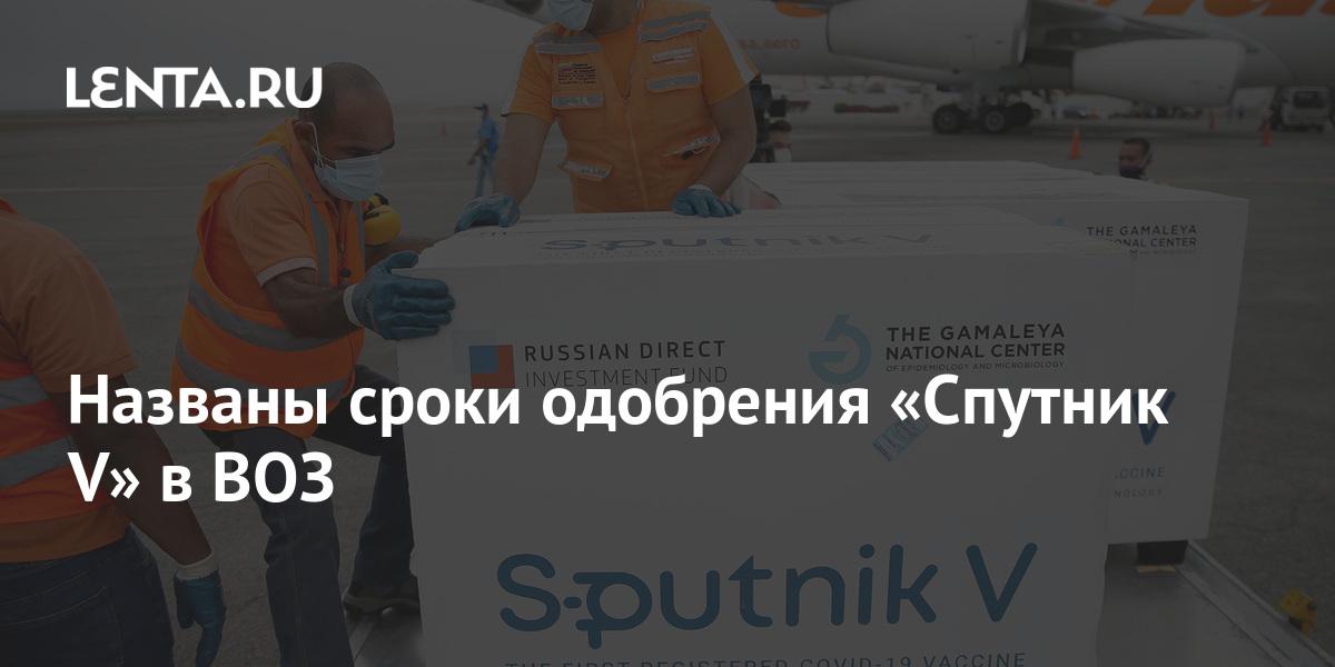 share c803d5d24ddfd3c9eac794b710d23e27 Названы сроки одобрения «Спутник V» в ВОЗ