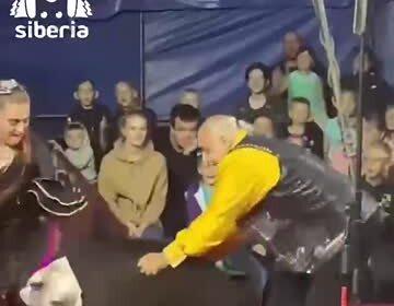 Нападение медведя на российских дрессировщиков в цирке сняли на видео