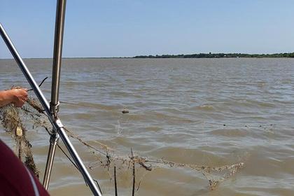 Более 20 километров береговой линии озера Ханка очистили от мусора