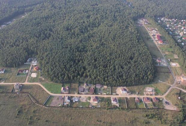 Деревня Ельня в Ногинском районе Подмосковья