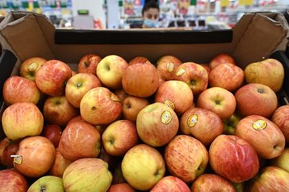 Дешевые импортные яблоки стали проблемой России