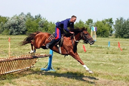 В Волгоградской области проведут фестиваль традиционной казачьей культуры