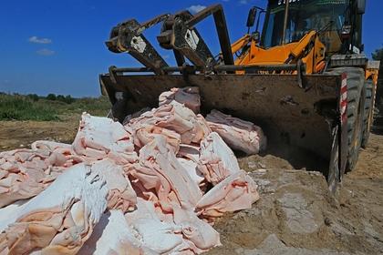 Россию уличили в уничтожении продуктов на 1,6 триллиона рублей