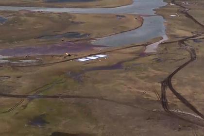 Эксперт опроверг оценку Росрыболовства ущерба водной фауне на Таймыре