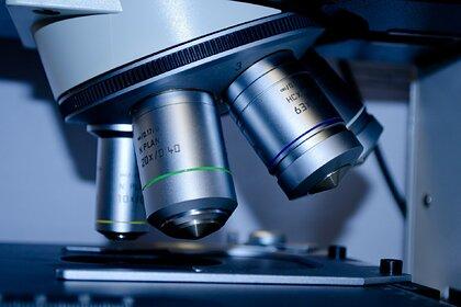 В Китае заподозрили утечку опасных вирусов из американской лаборатории