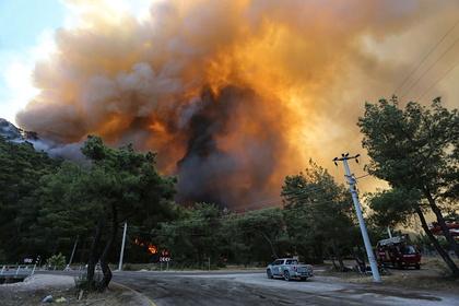 Оказавшаяся в эпицентре пожаров в Турции российская актриса рассказала о хаосе