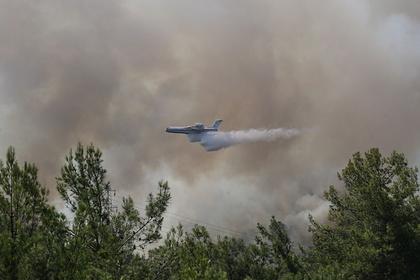 В Госдуме ответили критикам решения о помощи Турции в тушении лесных пожаров
