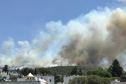 Мощный пожар в Турции сумели взять под контроль