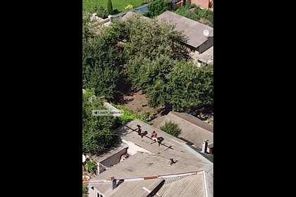 Полуголый украинец подрался с полицией и сбросил патрульного с крыши дома