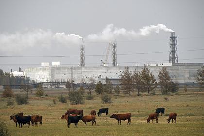 Российским регионам раздадут миллиарды рублей на борьбу с загрязнением воздуха