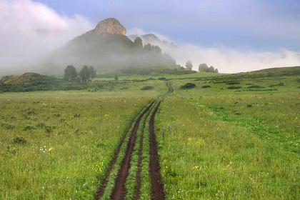 В Алтайском крае запустят новый маршрут экотура по Тигирекскому заповеднику