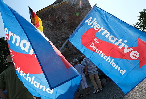 Сторонники партии «Альтернатива для Германии»