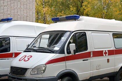 Еще трех россиян госпитализировали после отравления арбузом в Москве: Общество: Россия: Lenta.ru