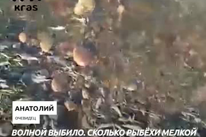 https://icdn.lenta.ru/images/2021/09/14/11/20210914111934583/pic_d9a153bd9ca11a45c41bdd1c83179486.jpg