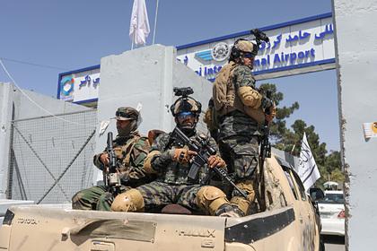 Талибы захотели создать регулярную армию в Афганистане