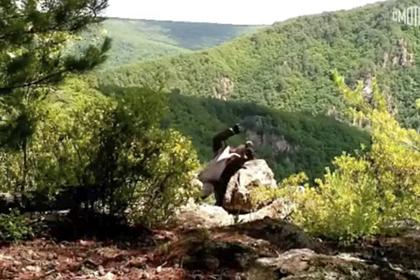 «Акробатические пируэты» гималайского медведя из Приморья попали на видео