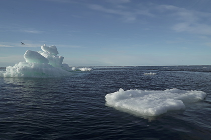 Климатологи оценили таяние льдов в Арктике за лето