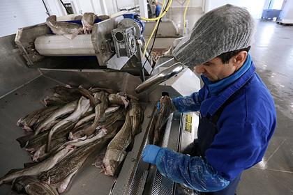 Российским рыбакам повысят налоги