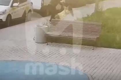 Режиссер фильма «Вызов» избил гражданскую жену перед выездом на Байконур