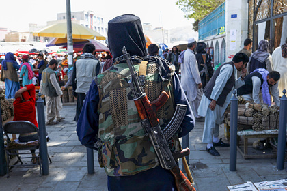 Талибы запретили транслировать игру в крикет из-за женщин на стадионе