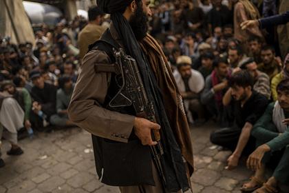 Боевиков «Талибана» накажут за проступки