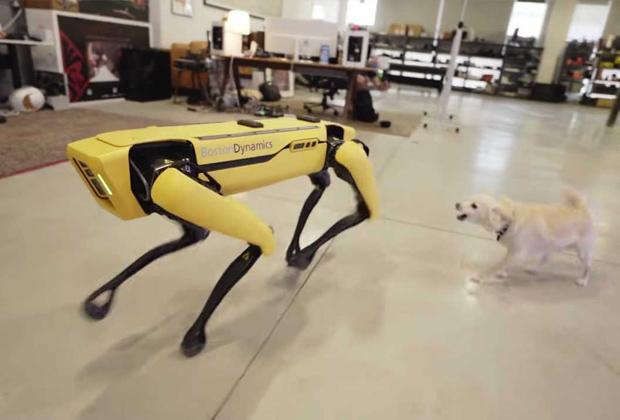Робот Spot от Boston Dynamics и пес