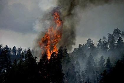 Российскую шаманку задержали в США за сожженную деревню