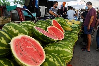 Фото: Владимир Федоренко / РИА Новости
