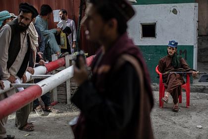 Талибы оценили возможность нападения террористов на соседей Афганистана