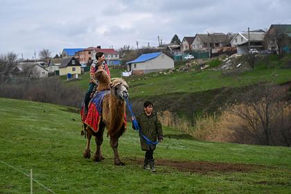 В России остался последний регион без обязательной вакцинации части жителей