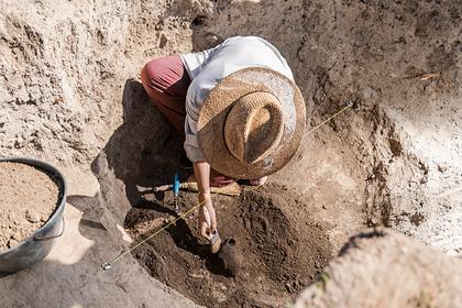 Археологи обнаружили в Саратовской области мечи-акинаки сарматского периода